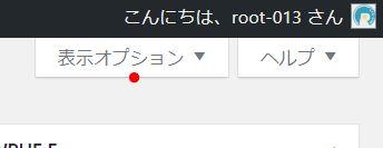 表示オプションタブをクリック